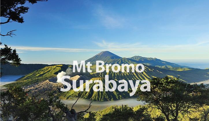 surabaya724420